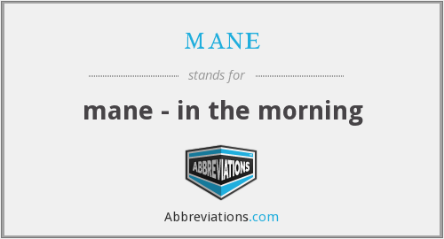 mane - mane - in the morning