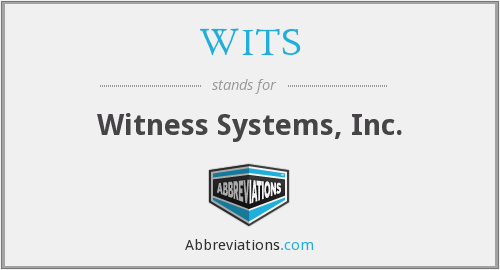 WITS - Witness Systems, Inc.