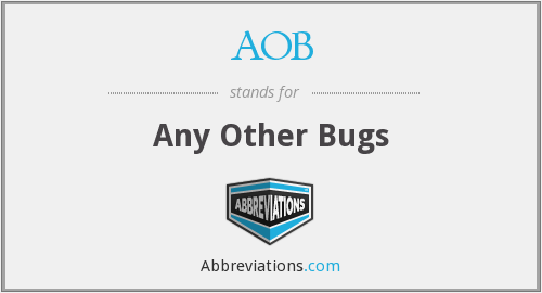 AOB - Any Other Bugs