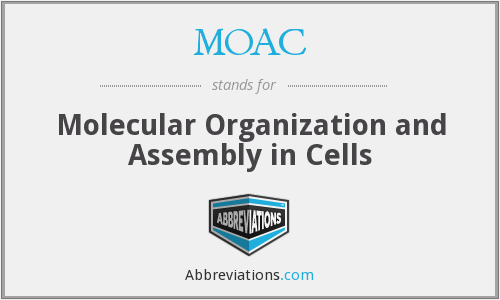 MOAC - Molecular Organization and Assembly in Cells