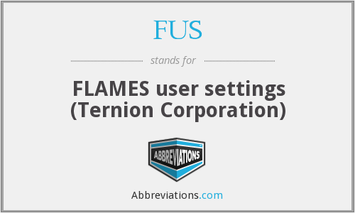FUS - FLAMES user settings (Ternion Corporation)