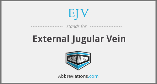 What does EJV stand for?