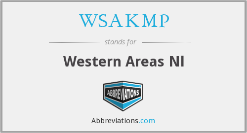 What does WSAKMP stand for?