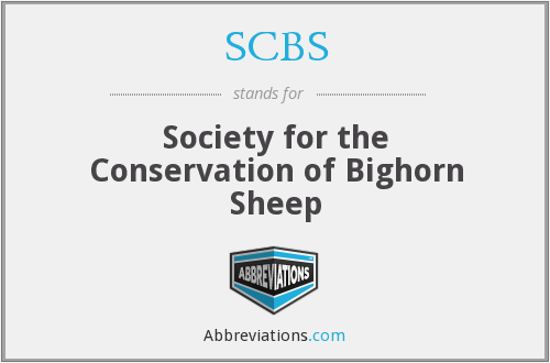 SCBS - Society for the Conservation of Bighorn Sheep