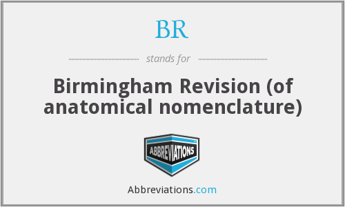 BR - Birmingham Revision (of anatomical nomenclature)