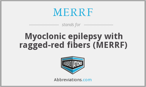 MERRF - Myoclonic epilepsy with ragged-red fibers (MERRF)