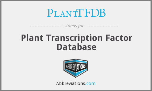 What does PLANTTFDB stand for?
