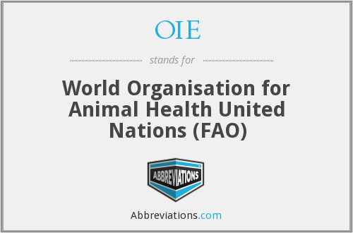 OIE - World Organisation for Animal Health United Nations (FAO)