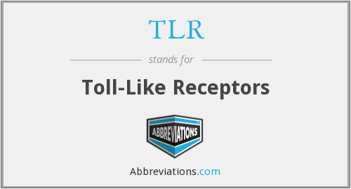 TLR - toll-like receptors