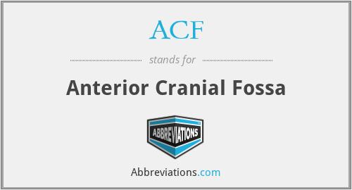 ACF - anterior cranial fossa