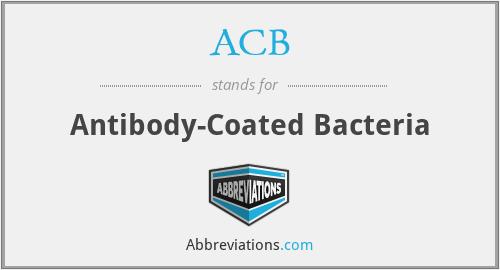 ACB - antibody-coated bacteria