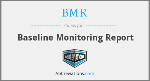 BMR - baseline monitoring report