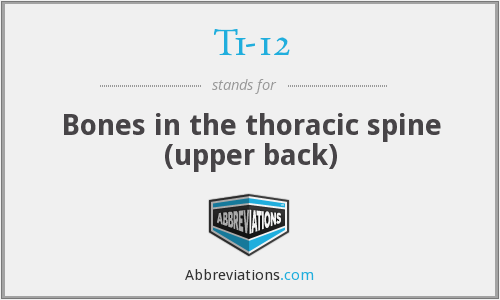 T1-12 - Bones in the thoracic spine (upper back)