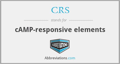 CRS - cAMP-responsive elements