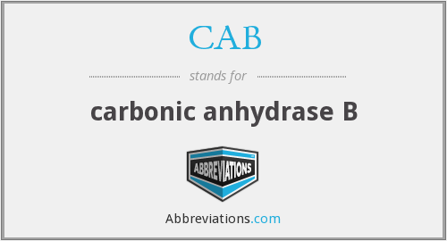 CAB - carbonic anhydrase B