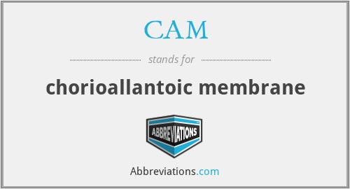 CAM - chorioallantoic membrane
