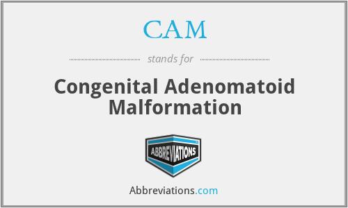 CAM - congenital adenomatoid malformation