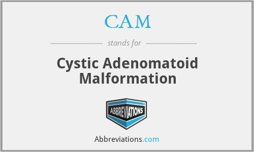 CAM - cystic adenomatoid malformation