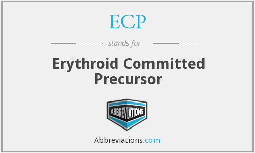 ECP - Erythroid Committed Precursor