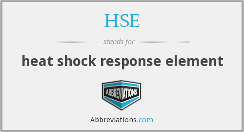 HSE - heat shock response element