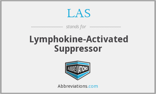 LAS - lymphokine-activated suppressor