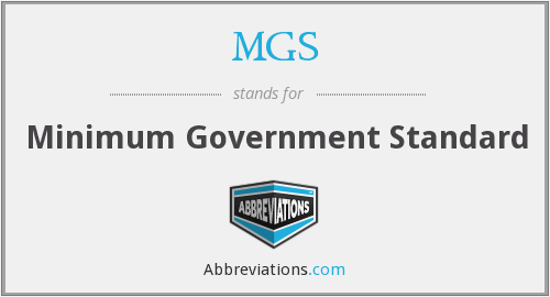 MGS - Minimum Government Standard