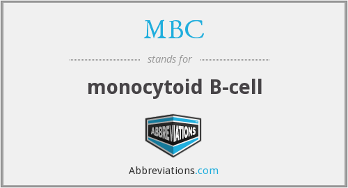 MBC - monocytoid B-cell