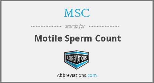 MSC - motile sperm count