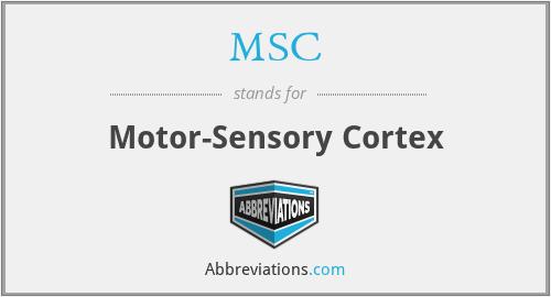 MSC - motor-sensory cortex