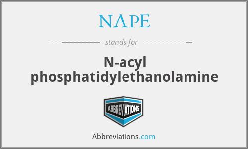 NAPE - N-acyl phosphatidylethanolamine