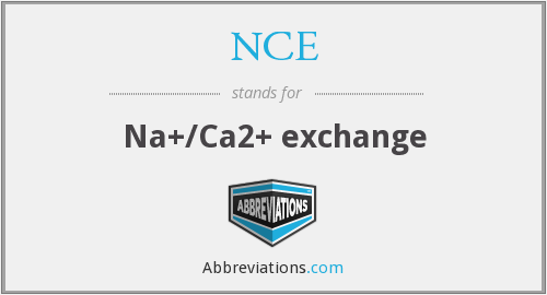 NCE - Na+/Ca2+ exchange