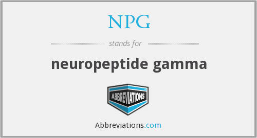 NPG - neuropeptide gamma