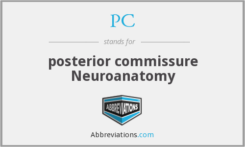 PC - posterior commissure Neuroanatomy