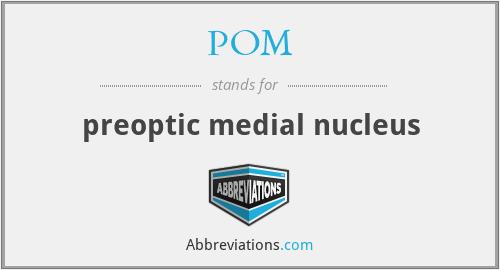 POM - preoptic medial nucleus
