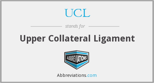 UCL - upper collateral ligament