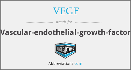 VEGF - Vascular-endothelial-growth-factor