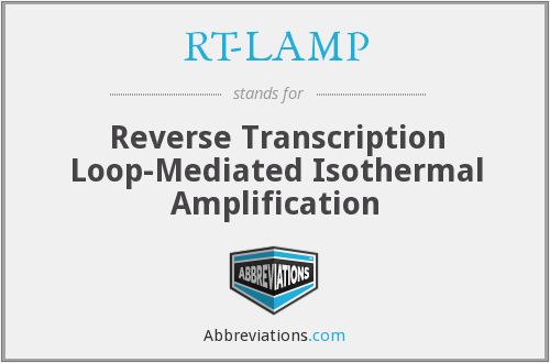 What does RT-LAMP stand for?