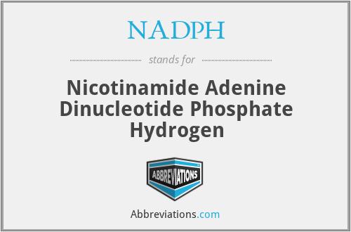 NADPH - Nicotinamide Adenine Dinucleotide Phosphate Hydrogen
