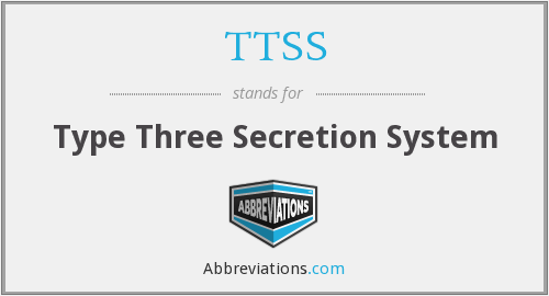TTSS - Type Three Secretion System