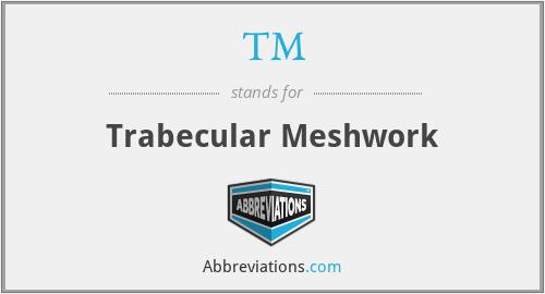 TM - trabecular meshwork