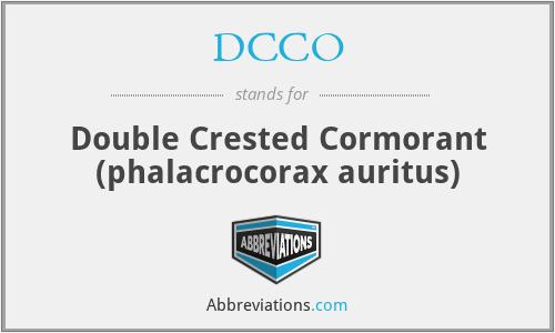 DCCO - Double Crested Cormorant (phalacrocorax auritus)