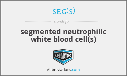 seg(s) - segmented neutrophilic white blood cell(s)