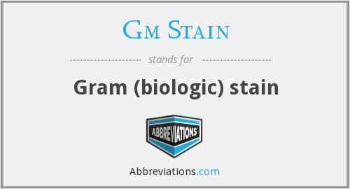 Gm Stain - Gram (biologic) stain