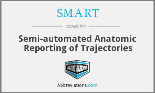 SMART - Semi-automated Anatomic Reporting of Trajectories