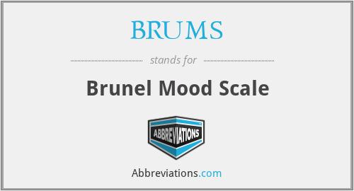 BRUMS - Brunel Mood Scale