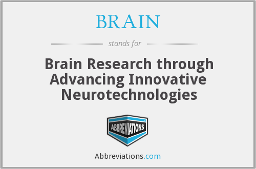 BRAIN - Brain Research through Advancing Innovative Neurotechnologies