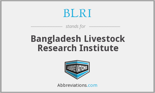 What does BLRI stand for?