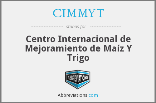 What does CIMMYT stand for?