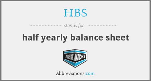 HBS - half yearly balance sheet