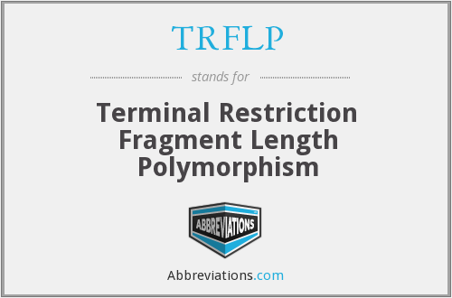 TRFLP - Terminal Restriction Fragment Length Polymorphism